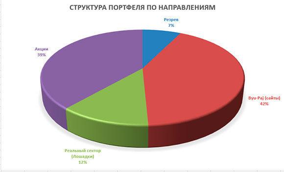 Диаграмма портфеля по направлениям
