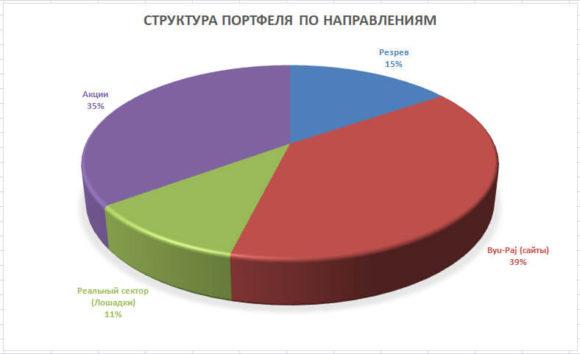 диаграмма портфеля по инвестиционным направлениям